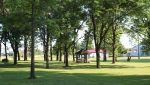 grounds and Boji Bantam