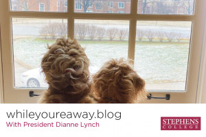 whileyoureaway.blog with President Dianne Lynch